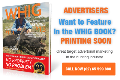 Advertising in the hunting industry