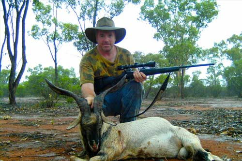 Hunting Goats in NSW