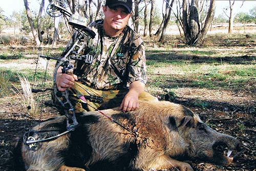 Bowhunting for Pigs