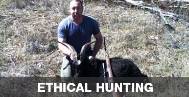 Ethical Hunting in Australia