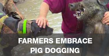 Farmers welcome Pig Doggers