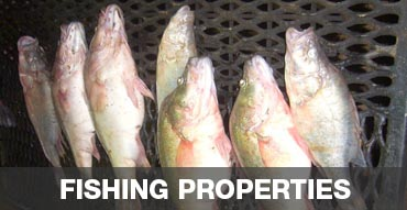 Hunting Properties with Fishing