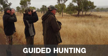 guided hunting safaris Australia