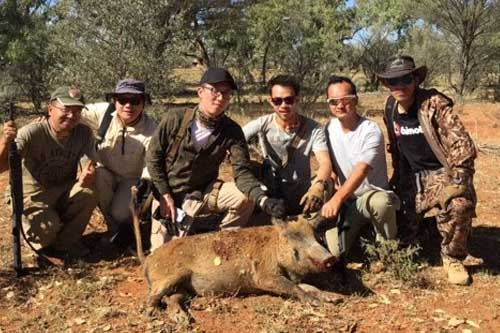 Pig Hunting with Mates in Australia