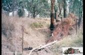 Tara #2 QLD Hunting Property