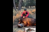 Goondiwindi #1 QLD Hunting Property