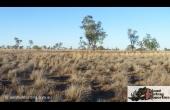Longreach #2 QLD Hunting Property