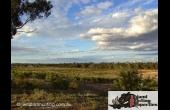 Byrock #4 Hunting Property NSW