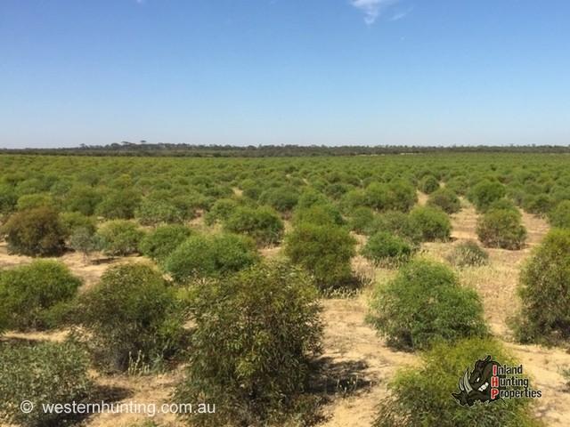 Hunting Properties Western Australia