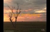 tambo-2-qld-ihp-hunting-property-60