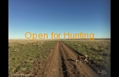 tambo-2-qld-ihp-hunting-property-63