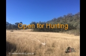 Barraba #3 Hunting Property