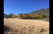 Barraba #3 Hunting Property