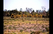 Hermidale #4 NSW Hunting Property