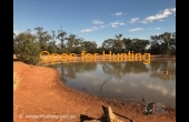 Goondiwindi #2 QLD Hunting Property