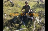 Tenterfield #2 NSW Hunting Property