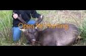 Bombala #2 NSW Hunting Property