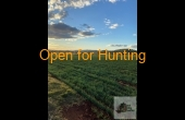 Texas #3 QLD Hunting Property