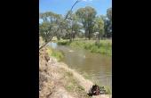 Molong #1 NSW Hunting Property
