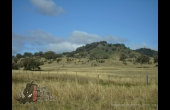 Quirindi #1 NSW Hunting Proeprty