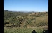 Scone #1 NSW Hunting Property