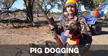 Pig Dogging in Australia