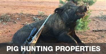 Browse our Pig Hunting Properties