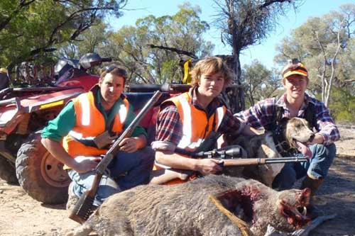 Hunting with groups in Australia