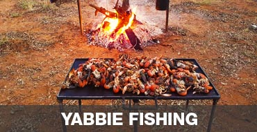 Yabbie Fishing in Australia